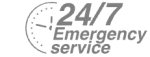 24/7 Emergency Service Pest Control in Harlesden, Willesden, NW10. Call Now! 020 8166 9746