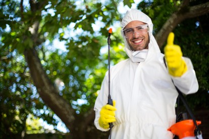 Pest Control in Harlesden, Willesden, NW10. Call Now 020 8166 9746