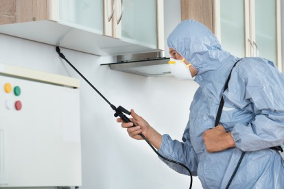 Home Pest Control, Pest Control in Harlesden, Willesden, NW10. Call Now 020 8166 9746